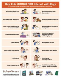 poster of how kids should NOT interact with dogs. Cartoon examples of children hurting humans and hurting dogs.
