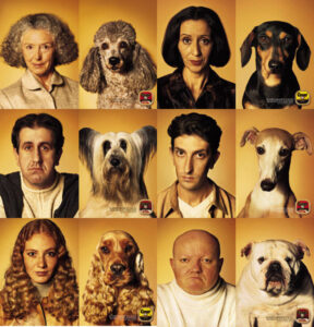 owners and their dogs who resemble each other